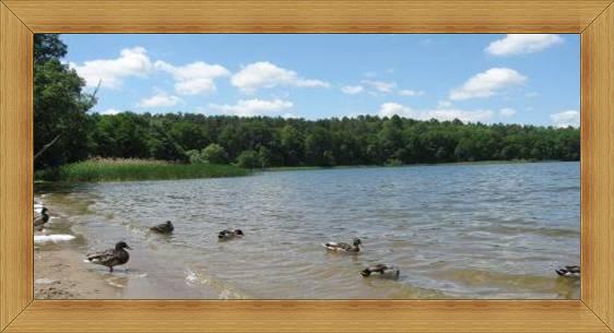 Piaszczyste plaże Olsztyn jeziora.