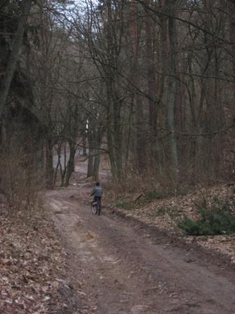 Gościniec Niborski część Szlaku Królewskiego
