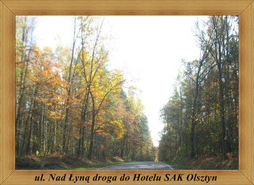 ul. Nad Łyną - droga do Hotelu SAK Olsztyn